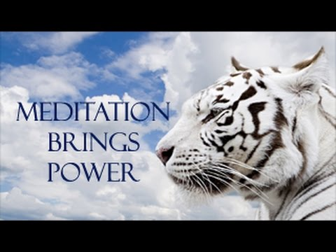 Meditation brings Power || Work your mental muscle